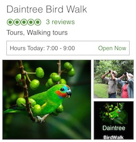 Daintree Bird Walk